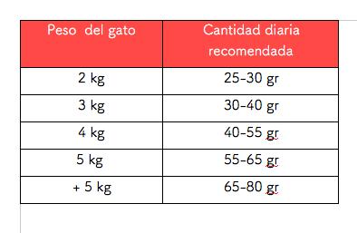 Cantidad-diaria-recomendada-Arion-Original-Cat-Derma