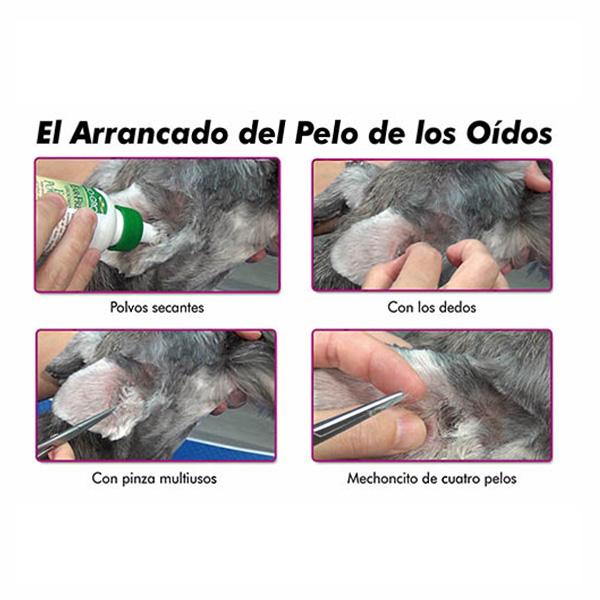 Mascotienda-Metodo-quitar-pelos-oídos