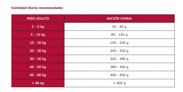 Cantidad-diaria-recomendada-Arion-Titanium-Sensicare